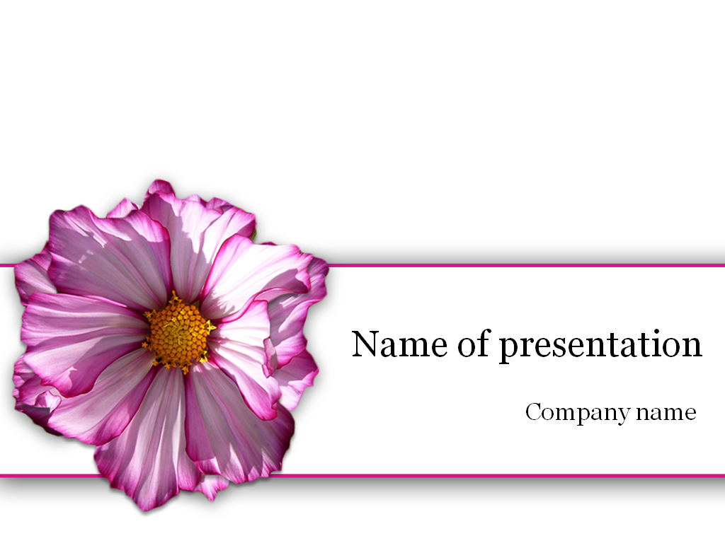Purple flower powerpoint template for presentation