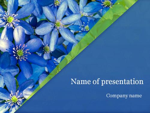 Violete Powerpoint template
