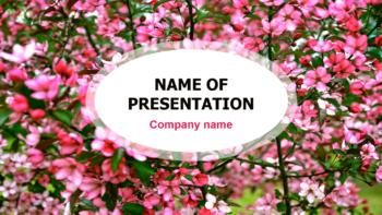 Blossom Garden PowerPoint template